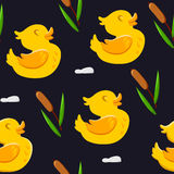 Seamless pattern with cute ducks and reeds. Ornament for textiles and wrapping. Vector background Stock Image