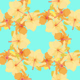 Seamless pattern with cute hibiscus. vector illustration Royalty Free Stock Images