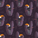 Seamless pattern with cute jungle parrot toucan on purple  Royalty Free Stock Photos