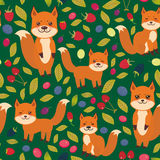 Seamless pattern cute kawaii  fox, Cherry Strawberry Raspberry Blackberry Blueberry Cranberry Cowberry Goji Grape  isolated on dar. K green background. Vector Royalty Free Stock Photos