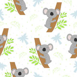 Seamless pattern with cute koala on the tree . Vector background for kids Stock Photography