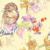 Seamless pattern of cute lama Royalty Free Stock Photography