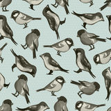 Seamless pattern with cute little birds Stock Images