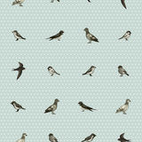 Seamless pattern with cute little birds Stock Photo