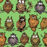 Seamless pattern with cute owls on branch. Hand drawn background Stock Photography
