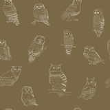 Seamless pattern of cute owls on a brown background Stock Photos