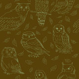 Seamless pattern of cute owls on a green background Royalty Free Stock Photography