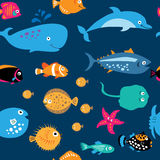 Seamless pattern with cute sea exotic fish Stock Photo