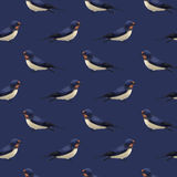 Seamless pattern with cute swallows Royalty Free Stock Photography