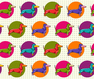 Seamless Pattern with Dachshund Royalty Free Stock Photo