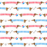 Seamless pattern with dachshunds Royalty Free Stock Images