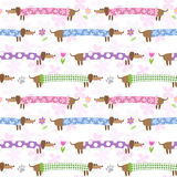 Seamless pattern with dachshunds Stock Photo