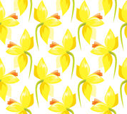 Seamless pattern with daffodils Royalty Free Stock Photography