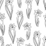 Seamless pattern with daffodils. Hand-drawn  black-white  Stock Photos
