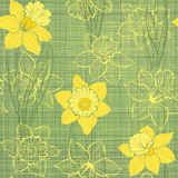 Seamless pattern with daffodils. Hand-drawn   illustration Stock Photo