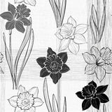 Seamless pattern with daffodils. Hand-drawn  monochrome  i Royalty Free Stock Photography