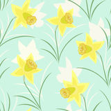 Seamless pattern with daffodils Royalty Free Stock Photo