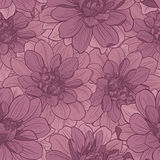 Seamless pattern with dahlia flowers . Floral ornament. Royalty Free Stock Photo
