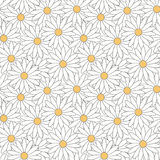 Seamless pattern of daisies. Stock Photo