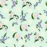 Seamless pattern with daisies. Seamless pattern with beautiful daisies. Background with flowers vector illustration