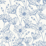Seamless pattern with daisies. Royalty Free Stock Images