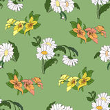Seamless pattern with daisy. Royalty Free Stock Photos