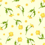 Seamless pattern with dandelion flowers. Vector illustration. Royalty Free Stock Photos