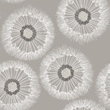 Seamless pattern of dandelion. Hand-drawn floral background. Mon Stock Photos