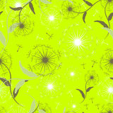Seamless pattern of dandelions Royalty Free Stock Photography