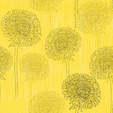 Seamless pattern of dandelions . Hand-drawn floral background, Stock Images