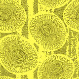 Seamless pattern of dandelions. Hand-drawn floral background,  v Stock Images