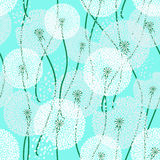 Seamless pattern of dandelions Stock Images