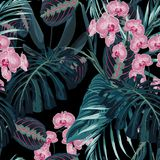 Seamless pattern, dark green colors palm leaves and tropical pink orchid flowers on black background. Vintage style royalty free illustration