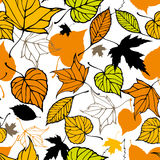 Seamless pattern with decorative autumn leaves Stock Images