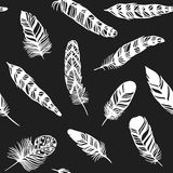 Seamless pattern with decorative feather background vector illustration. Feather background bird abstract pattern and decoration beautiful feather background Royalty Free Stock Photography