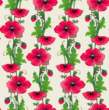 Seamless pattern with decorative flowers. EPS10. Contains transparency and gradients Royalty Free Stock Image