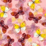Seamless pattern with decorative hand painted drawing - colorful butterfly Stock Photography