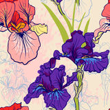 Seamless pattern with decorative  iris flower in retro colors. Stock Photos