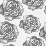 Seamless pattern with decorative magnolias flowers. Vector flora Stock Images