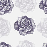 Seamless pattern with decorative magnolias flowers. Vector flora Royalty Free Stock Photo
