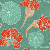 Seamless pattern with decorative nasturtium Stock Image