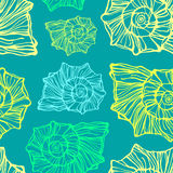 Seamless pattern with decorative seashells Stock Photography