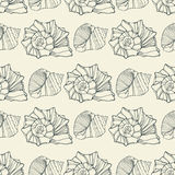 Seamless pattern with decorative shells Royalty Free Stock Image