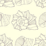 Seamless pattern with decorative shells Stock Photos