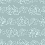 Seamless pattern with decorative shells Royalty Free Stock Photo
