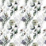 Seamless pattern with Decorative summer flowers. Watercolor illustration Stock Photography