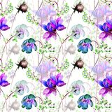 Seamless pattern with Decorative summer flowers. Watercolor illustration Stock Image
