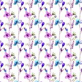 Seamless pattern with Decorative summer flowers. Watercolor illustration Stock Images