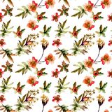 Seamless pattern with Decorative summer flowers. Watercolor illustration Stock Photo