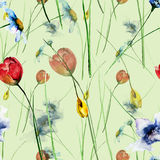 Seamless pattern with Decorative summer flowers Stock Photography